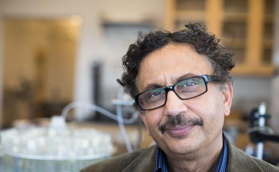 Arup SenGupta is a professor of civil and environmental engineering and chemical engineering at Lehigh University